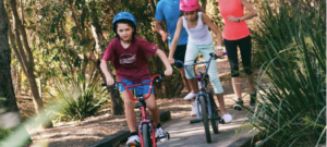 Kids Riding Bicycle In The Park